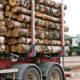 What happens if a truck driver in Louisiana causes a crash as a result of carrying an oversized load?